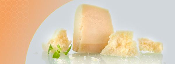 آفلاتوکسن در پنیر